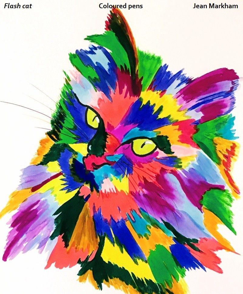 Flash cat CAS.jpg