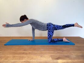 Stephanie Fancy Pilates Beginners