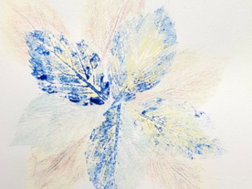 Studio Session: Printing with Natural Objects